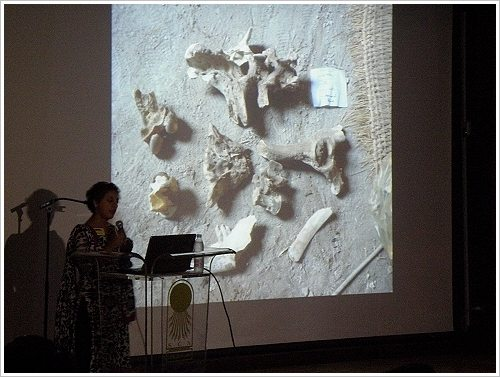 South Asasif Conservation Project Conference - Salima Ikram
